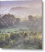 Indonesia, Bali, Forest Landscape Metal Print