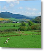 Innerleithen And Tweed Valley Looking East Metal Print