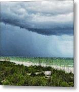 Island Rain Metal Print