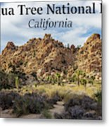 Joshua Tree National Park Box Canyon, California Metal Print