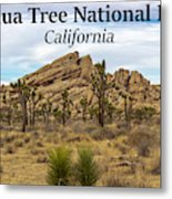 Joshua Tree National Park, California 03 Metal Print