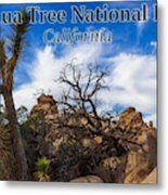 Joshua Tree National Park, California Box Canyon 02 Metal Print