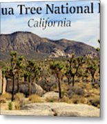 Joshua Tree National Park Valley, California Metal Print