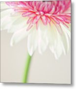 Joyful Whisper Metal Print