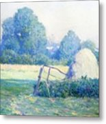 July Afternoon Metal Print