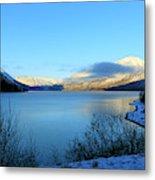 Kenai Lake Primrose Kenai Peninsula Alaska Metal Print