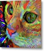 Koko The Orange Cat Metal Print