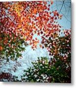 Kuhonbutsu In Autumn Metal Print