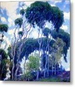 Laguna Eucalyptus 1917 Metal Print