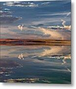 Lake Abert 4 Metal Print