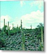 Lake Pleasant Az 047a Metal Print