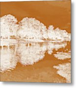 Lake Reflections In Brown Metal Print