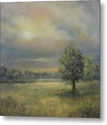Landscape Of A Meadow With Sun And Trees Metal Print