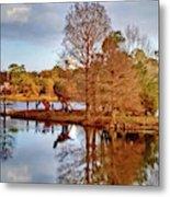 Langan Park Island Reflections Metal Print