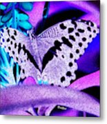 Lavender Butterfly Metal Print
