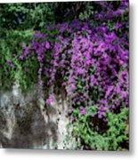 Lavender Pot Metal Print