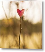 Leaf In Heart Shape Metal Print