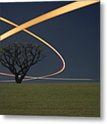 Light Trails Around Tree Metal Print