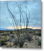 Lone Bush - Sunrise Metal Print
