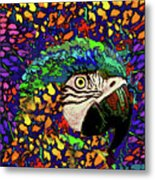 Macaw High II Metal Print