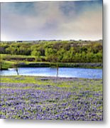 Mach Road Blubonnet Panorama In Evening Light Metal Print