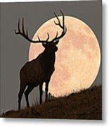 Majestic Bull Elk And Full Moon Rise Metal Print