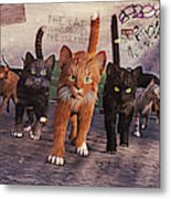 March Of The Mau Metal Print