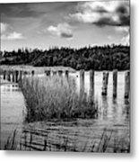 Mccormack's Beach Provincial Park, Black And White Metal Print