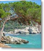Mediterranean Landscape In Menorca Metal Print