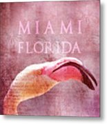 Miami Florida- Pink Flamingo Metal Print