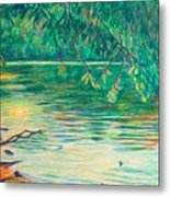 Mid-spring On The New River Metal Print