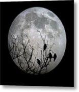 Midnight Moonshiners  Metal Print