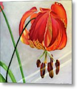 Moment in the Sun - Lily Metal Print