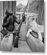 Monkeying About Metal Print