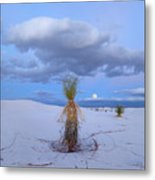 Moon And Soaptree Yucca, White Sands Metal Print