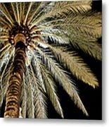 Moon Through Palm Tree Metal Print