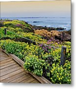 Moonstone Boardwalk Metal Print