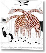 More giraffes Metal Print