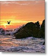 Morning Flight Serenity Metal Print