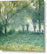 Morning Mist Also Known As Late Spring Metal Print