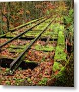 Mossy Train Track In Fall Metal Print