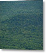 Mount Greylock Reservation's Trees Metal Print