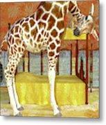 Ms Kitty And Her Giraffe  Metal Print