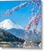 Mt Fuji And Cherry Blossom At Lake Metal Print