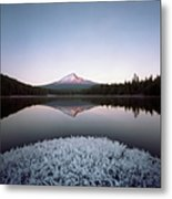 Mt. Hood Lit By Sunrise Metal Print