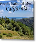 Muir Woods National Monument California Metal Print