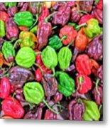 Multi Mini Hot Pepper Variety Metal Print