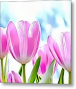 Naturalness And Flowers 40 Metal Print