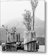 New From Old Metal Print