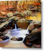 New Jersey Pines Metal Print